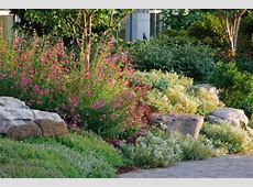 Create a Rock Garden Tips for Success HGTV