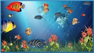 Free Animated Fish Aquarium Screensaver