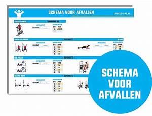 Trainingsschema voor crosstrainer effectief afvallen