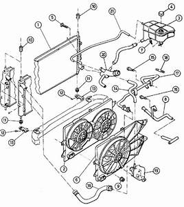 Ford Focus Zetec Cooling System Diagram