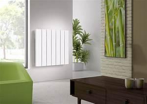 Quel Radiateur électrique Choisir : quel radiateur electrique choisir pour salon quel ~ Melissatoandfro.com Idées de Décoration