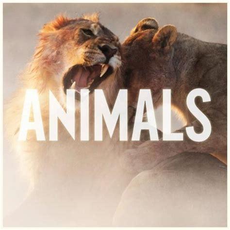 animals sheet   maroon  piano vocal guitar