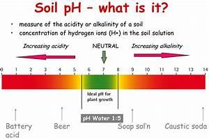 What Is My Optimum Soil Ph