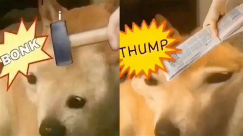 doge bonk  thump doge meme youtube