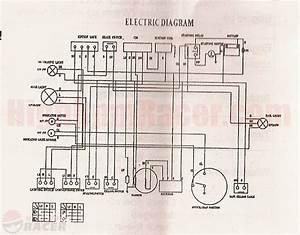 Taotao 49cc Wiring Diagram
