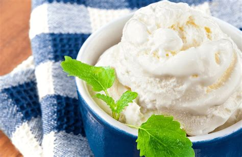 Ice Cream Substitute Bariactric Recipes Sparkrecipes