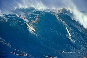 Huge Surf On North Shore Of Oahu Shows You Don't Have To ...