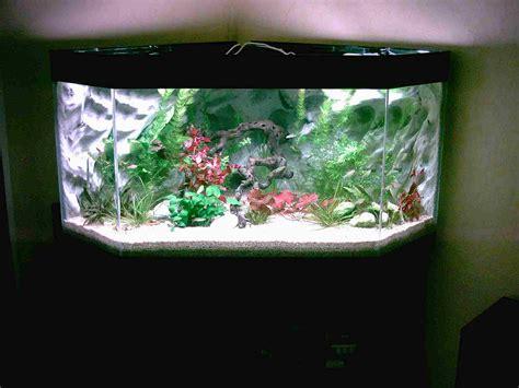 decorer un aquarium d eau douce aquaplum coraux fabrication d aquariums