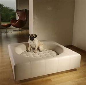 comfortable place for your furry friend dog furniture ideas With amazing dog beds