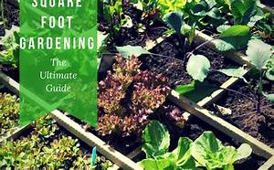 Dappled Air  How To Make Simple Square Foot Gardening