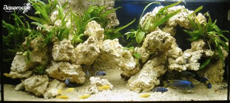 decor de fond aquarium decorations for cichlid fish aquariums aquaroche