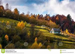 Abandoned, House, In, Autumn, Forest, On, Hillside, Stock, Photo