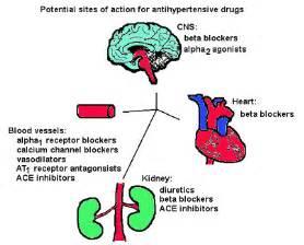 Recall B.P. = (Stroke Volume x Heart Rate) x PeripheralVascular ...  Stroke Diuretics