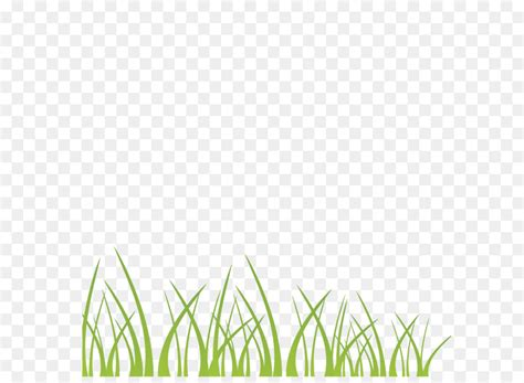 vector green grass decoration illustration background png
