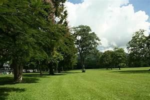 Queen's Park   Mapio.net