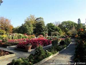 Jardin Botanique De Lyon : assembl e g n rale du conservatoire au jardin botanique de ~ Farleysfitness.com Idées de Décoration
