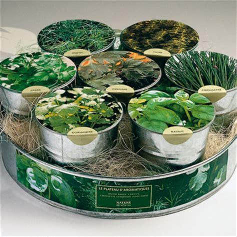 plante et bouquet nature et d 233 couvertes plateau d aromatiques objet d 233 co d 233 co