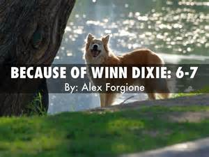 Miss Franny Because of Winn-Dixie Library