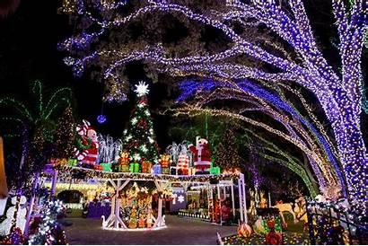 Lights Holiday Orlando Displays Florida Central Sentinel