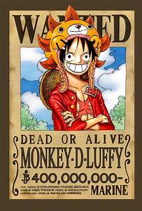 Monkey D. Luffy - New World Wanted Poster | One piece ...