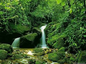 Japan: Beautiful Nature Waterfall Wallpapers for Free