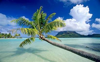 Beach 3d Background Beaches Backgrounds Wallpapers Tropical
