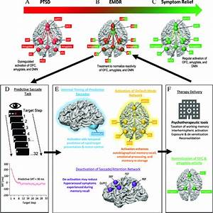 A New Neurobiological Model For The Contribution Of Ems In
