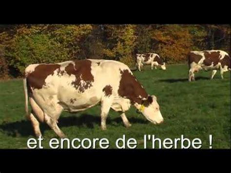 chambre d agriculture ardennes éleveur de vaches laitières et de brebis by