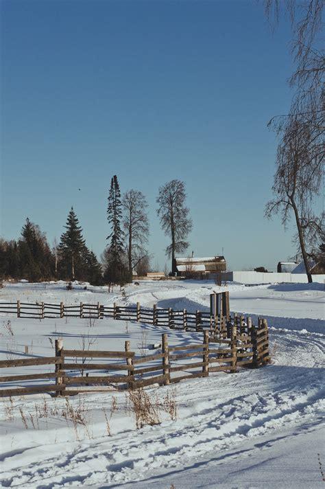 frozen lake  winter  stock photo