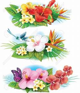 fleurs tropicales dessin With chambre bébé design avec bouquet fleurs tropicales