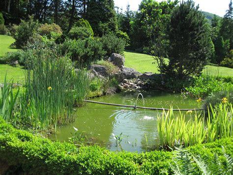 bassin jardinage wikipedia