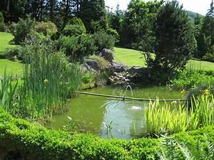 Jardin Avec Bassin : bassin jardinage wikip dia ~ Melissatoandfro.com Idées de Décoration
