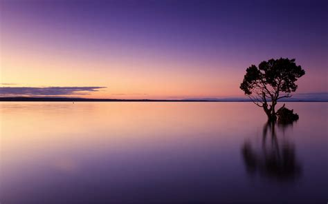 calm sunset  wallpapers hd wallpapers id