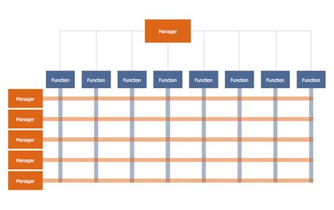 Organisation Structure Template by Matrix Organization Structure