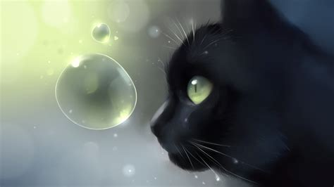 anime cat wallpaper  images