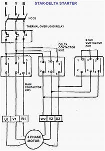 Wye Start Delta Run Motor Wiring Diagram Download