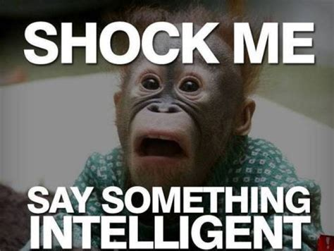 Funny Dissing Memes - 25 incredibly insulting but funny memes