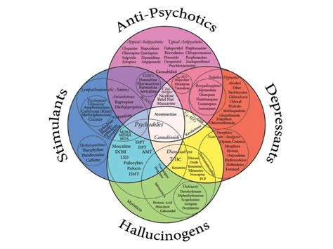 Diagram Of Adhd by Autism And Adhd Charts And Diagrams Wow Profit Packs