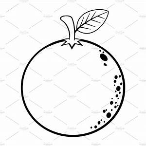 Black And White Orange Fruit ~ Illustrations ~ Creative Market