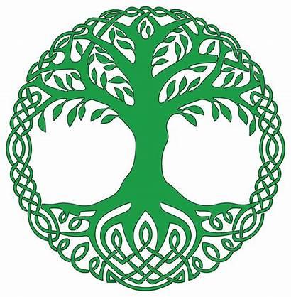 Celtic Tree Yggdrasil Clipart Symbol Meaning Symbols