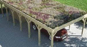 Carport Zu Verschenken : carports in bester qualit t hm carport ~ A.2002-acura-tl-radio.info Haus und Dekorationen