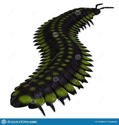 Coda Invertebrata Di Arthropleura Illustrazione di Stock ...