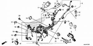 Wire Harness For 2016 Honda Crf1000