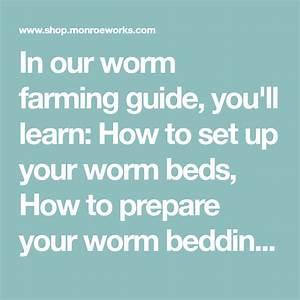 In Our Worm Farming Guide  You U0026 39 Ll Learn  How To Set Up