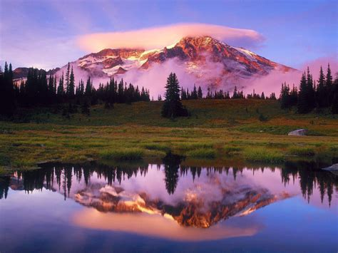 mount rainier lake national park washington  state sunrise spring landscape desktop hd