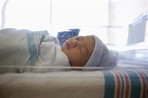 circumcision rate   hospitals  dropped