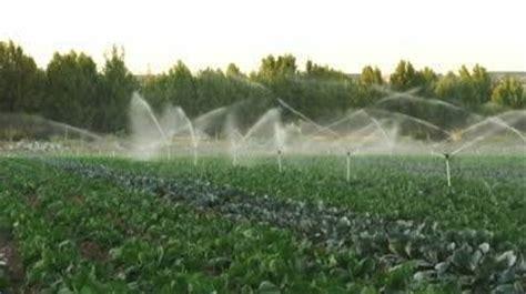 come irrigare un giardino irrigazione orto irrigazione come irrigare l orto