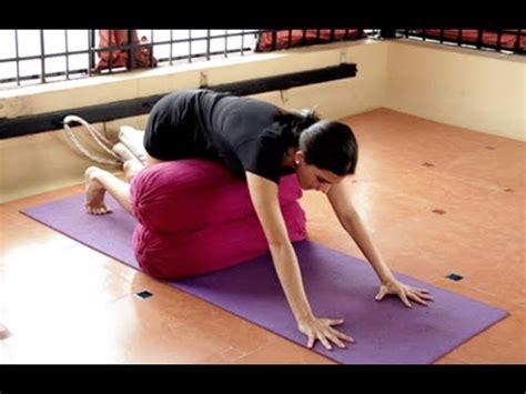 iyengar yoga    pain part ii  tamil youtube