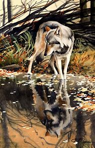Watercolor Wolf Painting Art