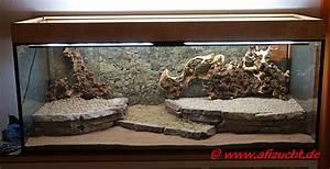 Aquarium Kies Kaufen : bodengrundgestaltung ~ Orissabook.com Haus und Dekorationen